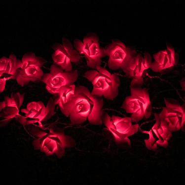 Luz solar da corda de Rosa